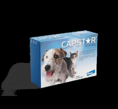 Antipulgas Capstar 11mg Elanco para Cães e Gatos Até 11,4Kg - 6 Comprimidos