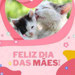 Mãe de Pet: Dia das mães com muito amor para o seu pet