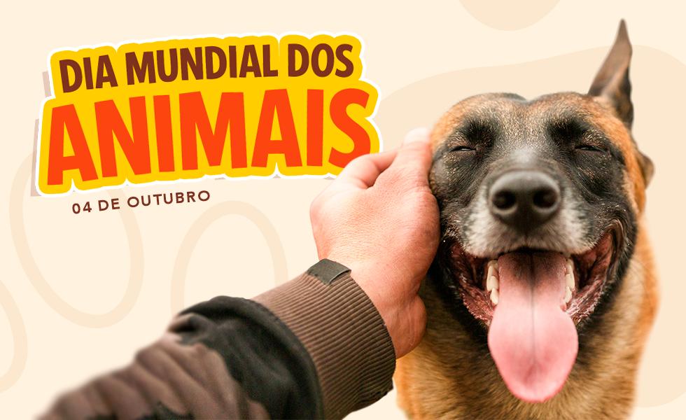 Dia Mundial dos Animais no Rei